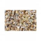 Bioverzum bio búza csíra (100 g) ML054498-40-6