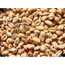 Vegabond puffasztott tönkölybúza natúr (100 g) ML071733-34-4