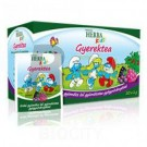 Herbária herba kids gyerektea erdei gy. (20 filter) ML072417-39-11